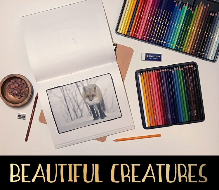 Beautiful Creatures is a gorgeous grayscale adult coloring book!