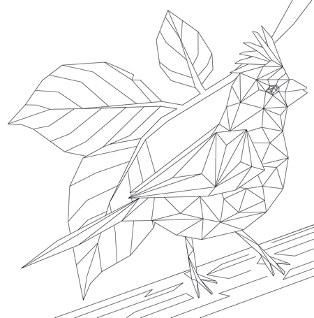 Crystal Menagerie Coloring Book: Geometric Animals to Color and Display