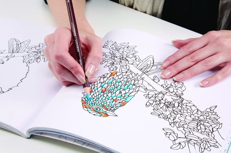 Unwind in the Wilds Coloring Book by Derwent