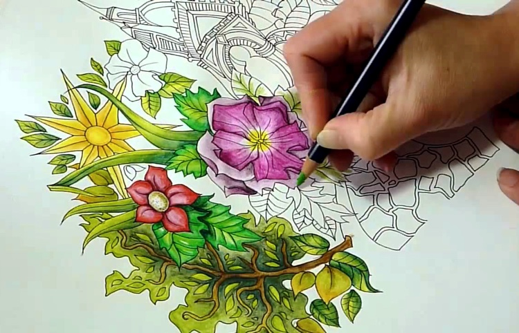 Peta Hewitt Has Some Amazing Tutorials And Speed Coloring Videos On YouTube That Are Great For