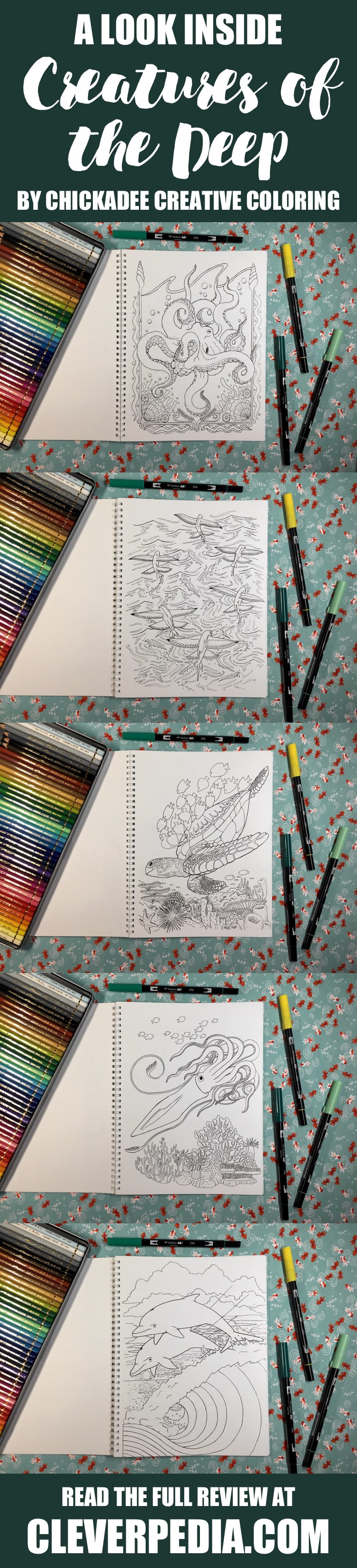 A look inside Creatures of the Deep, an adult coloring book by Chickadee Creative Coloring! This coloring book features 24 pages of original artwork by Andrew Youngblood. All the images feature realistic sea creatures, including fish, coral, sea turtles, octopi and squid, dolphins, and more.