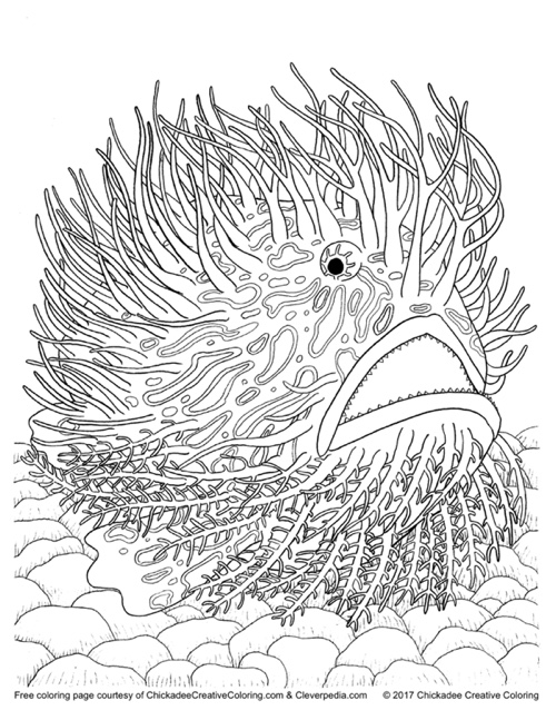 Free adult coloring book page from 'Creatures of the Deep' courtesy of Cleverpedia and Chickadee Creative Coloring!