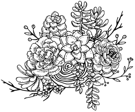 Succulent Love Adult Coloring Books