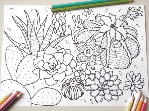 Zen Succulent Coloring Page By LaSoffittaDiSte Print Color