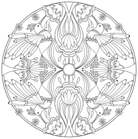 Creative Haven Bird Mandalas Coloring Book By Jo Taylor