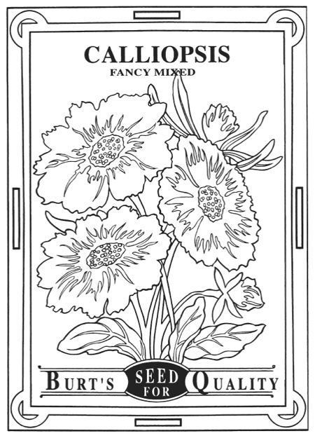 Creative Haven Vintage Flower Seed Packets Coloring Book By Marty Noble