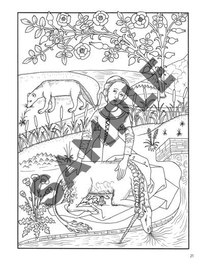 Elegant Herbs And Medicinal Plants Coloring Book
