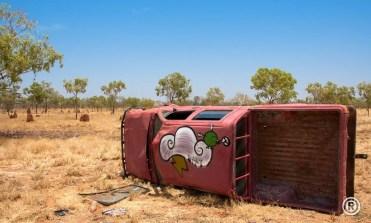 Wild Bird - Australie - 2009