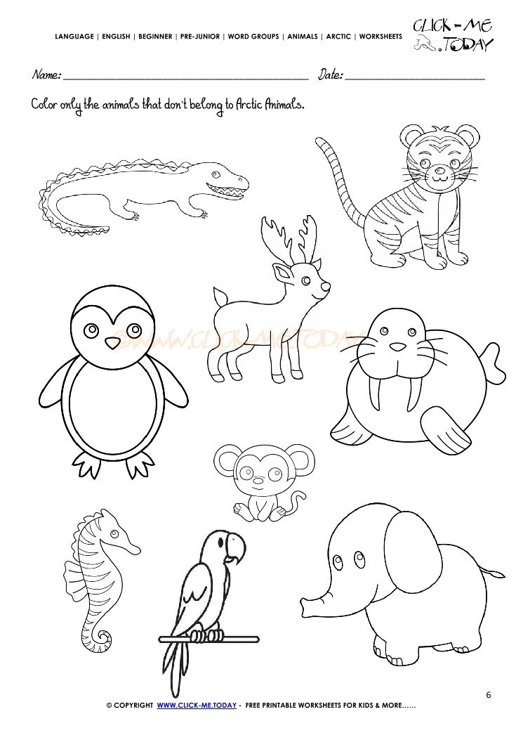 Preschool Worksheet On Animals. Preschool. Best Free