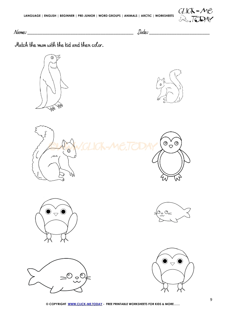 Arctic Animals Worksheets Free Worksheets Library