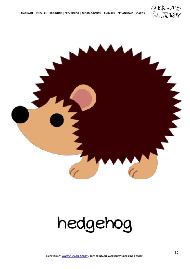 Printable Pet Animal Hedgehog Wall Card Hedgehog Flashcard
