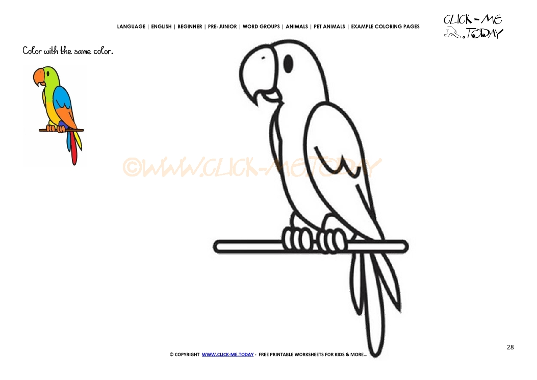 Pairots Animals Coloring Pages. Pairots. Best Free