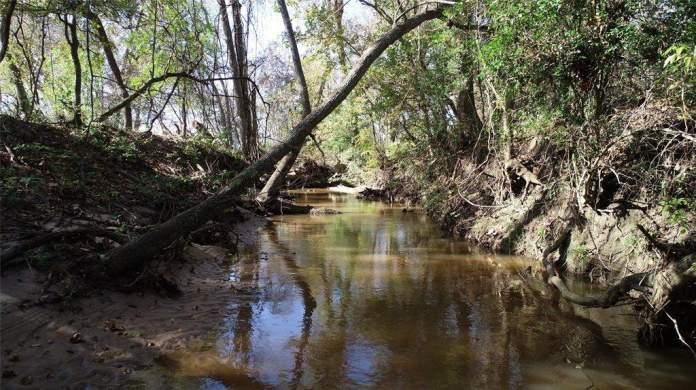 3896 CR 305. Creeks, tributaries and live springs throughout the ranch.
