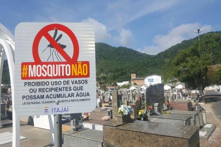 Cemitérios recebem mutirão de limpeza para remoção de criadouros do mosquito Aedes aegypti