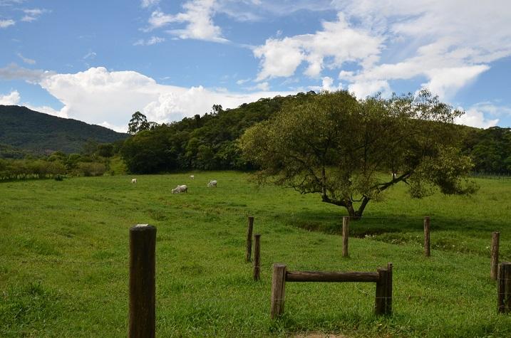 Prazo para cadastro ambiental de propriedades rurais é prorrogado até 31 de maio