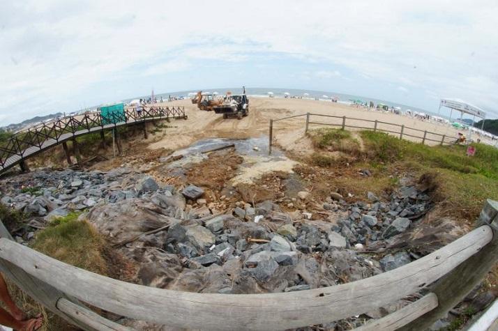 recuperação de faixa de areia e restinga na Praia Brava