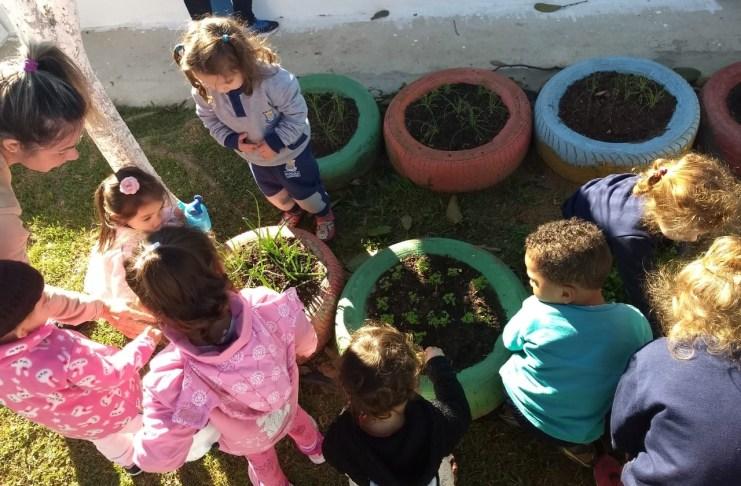 Alunos de Núcleo Infantil de BC produzem seus próprios alimentos em horta escolar