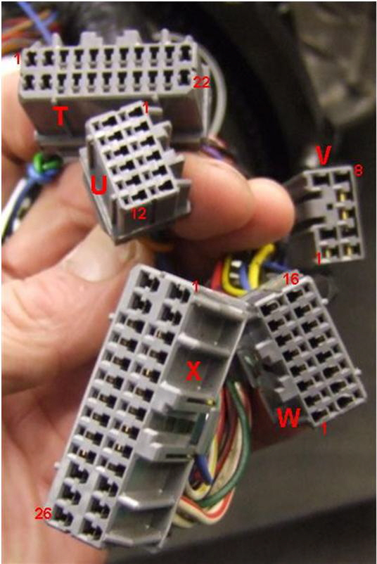 Wiring Diagram Furthermore 1jz Wiring Harness Diagram Additionally 1jz