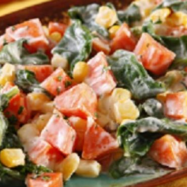 Comidas Vegetarianas  Receitas Vegetarianas  ClickGrtis