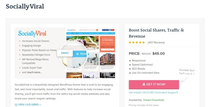 SociallyViral WordPress Theme To Increase Social Shares