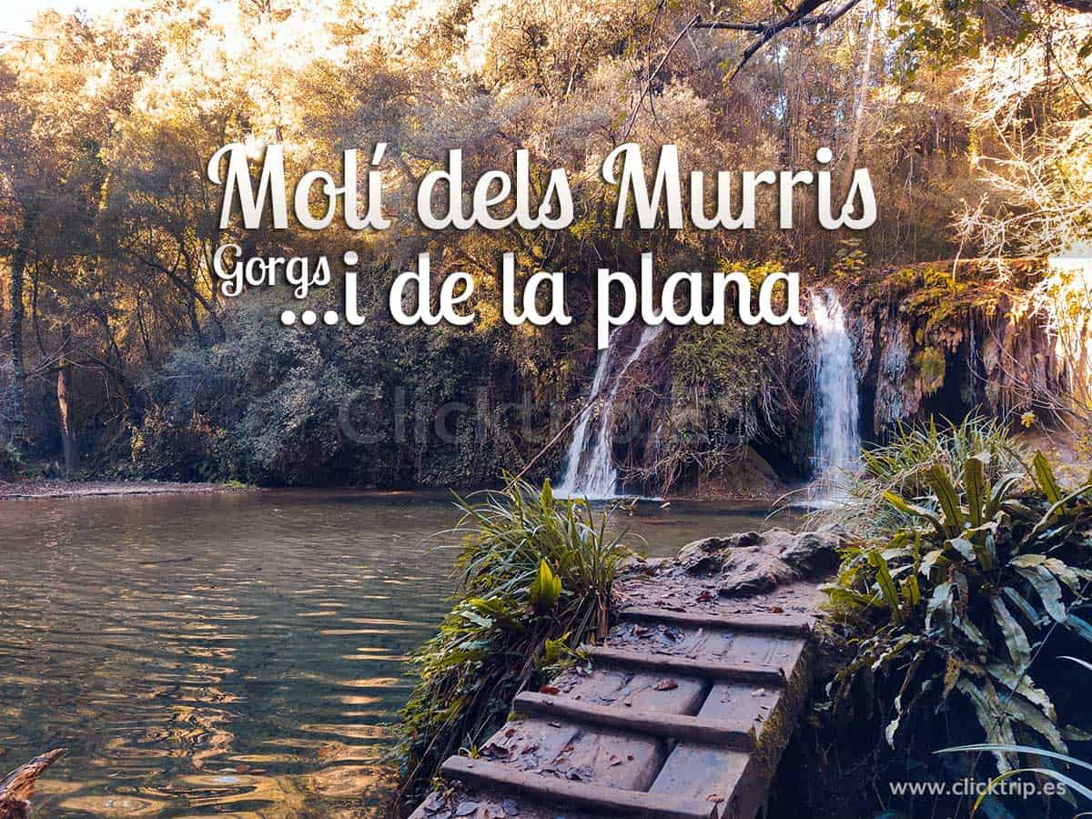 Gorgs Muli dels Murris i de la Plana_Catalunya Excursions_Senderisme_Montanya amb nens_ClickTrip
