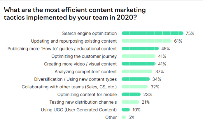 most successful content marketing tactics used in 2020 and how business will consider it in 2021