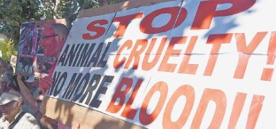 Ambientalistas acompanharam a votação no Parlamento com faixas pedindo fim da crueldade aos animais