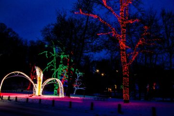 10 Free Things To Do In Niagara Falls For January