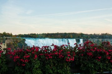 free things to do in November in Niagara Falls