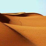 desert-1007157_1920