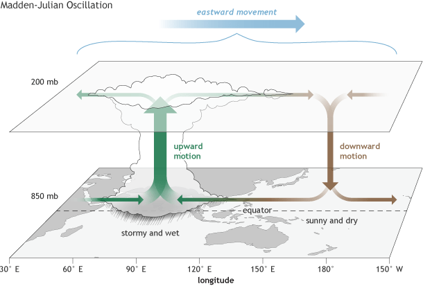 Madden-Julian Oscillation schematic