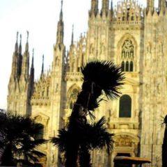 Palme, Banani e il Clima di Milano
