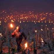 Gelato al Bordeaux, Global Cooling da CO2 e Parigi che si allontana