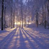 Che inverno sarà? Dipende dalla direzione