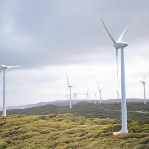 Australia States Waiting for Federal Go-Ahead to Transform Their Energy Grid