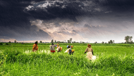 Can COVID-19 Economic Recovery Plans Help Put India on the Path to Low Carbon Sustainable Development?