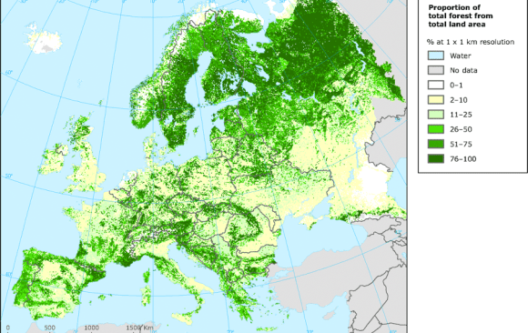 The EU Has Made a Strong Commitment to the Growth of Sustainable Forestry