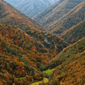Continental to Arid Climate Zones Becoming Less Apt for Biodiversity in Spain