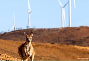 CSIRO and ARENA Leading Climate Mitigation Research in Australia