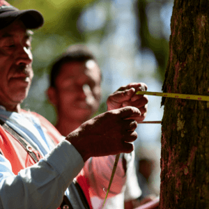 Best Climate Practice Mexico: Pronatura Mexico