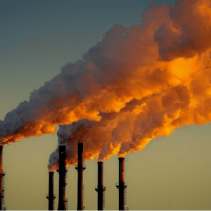 South Africa Aspires To Be Carbon Neutral By 2050