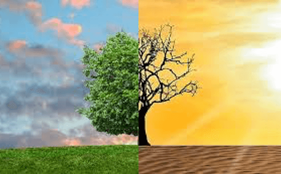 EU Member States Plans Not Ambitious Enough to Meet EU Climate Goals