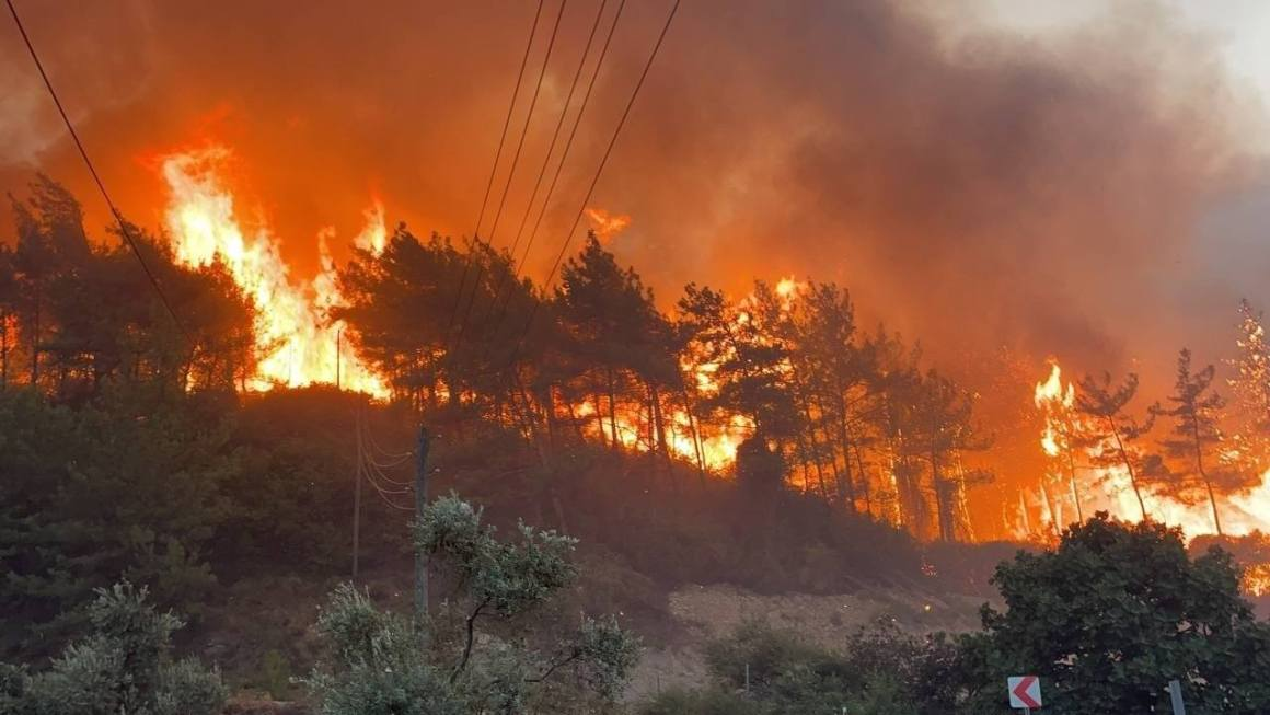Extreme Temperatures and Forest Fires in Turkey Reflect Climate Change