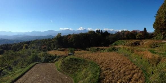 View from near Planetarium