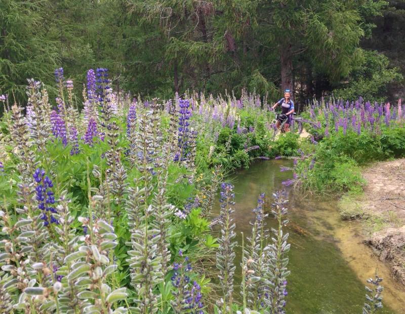 Mt Ida Water Race 2