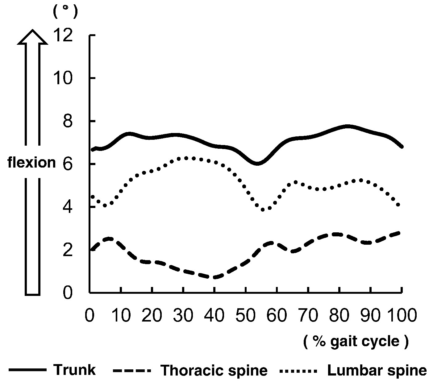 Characteristics Of Thoracic And Lumbar Movements During Gait In Lumbar Spinal Stenosis Patients