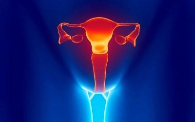 Injúria Endometrial (IE)