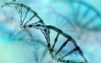 Biópsia líquida: Técnica não invasiva para diagnóstico genético dos embriões
