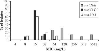 Gentamicin susceptibility in Escherichia coli related to