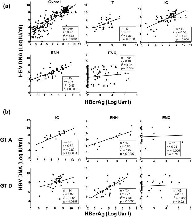 Hepatitis B core-related antigen (HBcrAg) levels in the